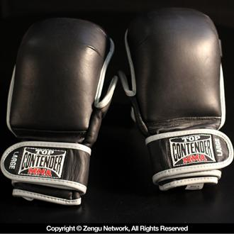 Top Contender MMA IMF Tech MMA Sparring Gloves